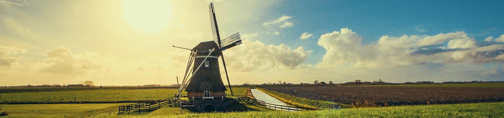 Best Dutch Brands